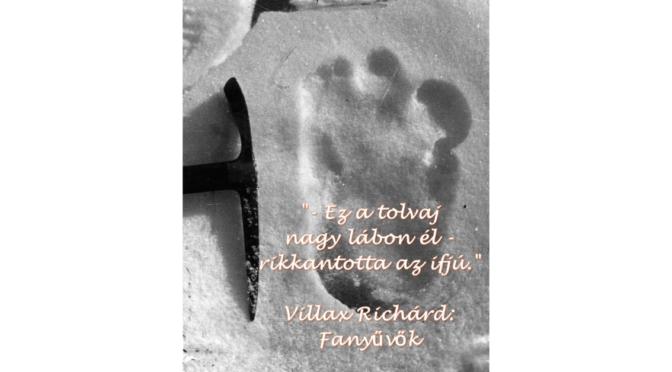 fanyuvok_villax-richard