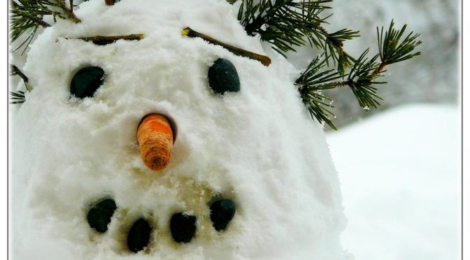 Mester Györgyi (Ad Librum Kiadó) A boldog hóember